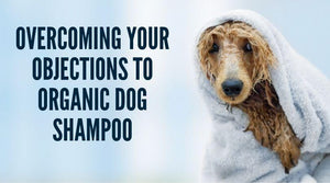 Tips to overcome your objections to organic dog shampoo