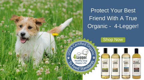 4-Legger Certified Organic Dog Shampoo and Paw Balm