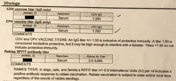 Titer Testing is a Safe and Effective Indicator or Immunity Before Getting Vaccinations