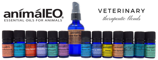 animalEO essential oil blends safe for dogs, cats, and other animals by integrative and holistic veterinarian Dr Melissa Shelton