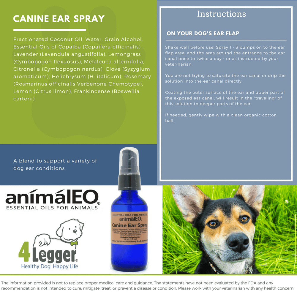 Canine Ear Spray Naturally Clean Your Dog S Ears With Essential Oils 4 Legger