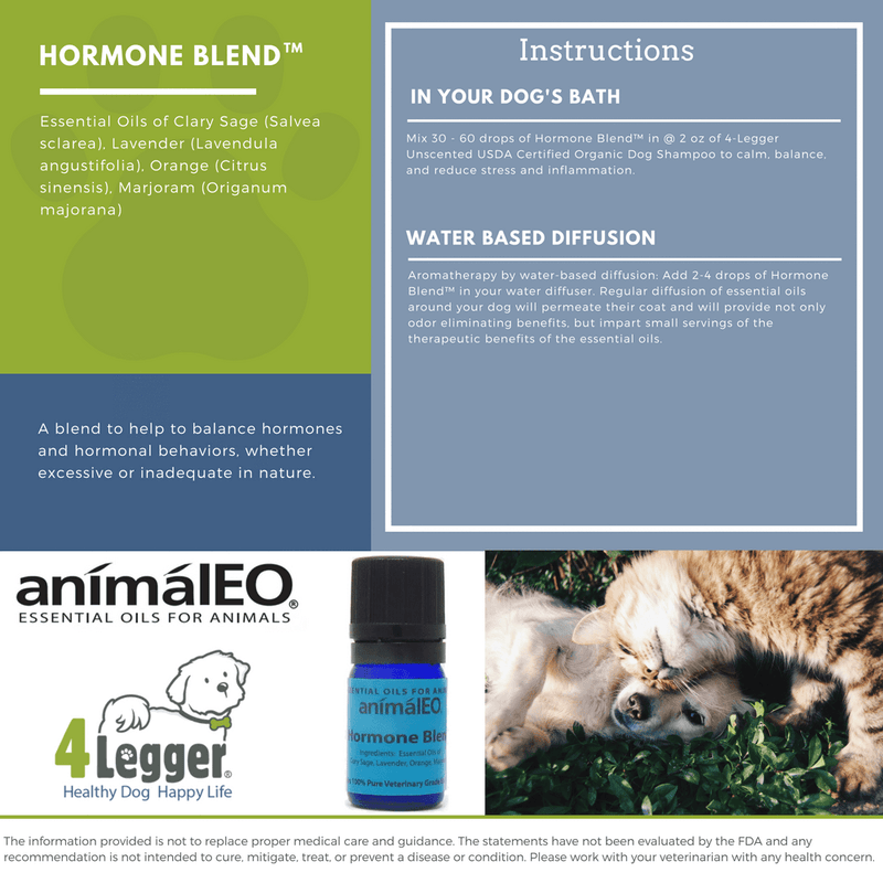 help balance your dog's hormones with pet safe essential oils