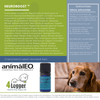 Pet safe essential oils to support neurological conditions