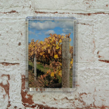 Small magnets - Various images