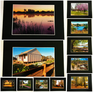 "Prints 8"" x 10""  - Multiple Images by Emay Images"