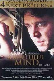 A Beautiful Mind Movie Poster 27x40 Used
