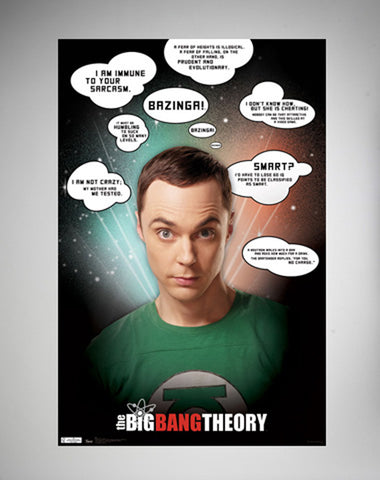 The Big Bang Theory – Quotes Poster 22x34 RP5626  Used