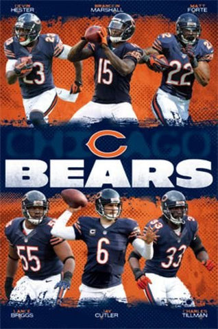 Chicago Bears - Team NFL 2013 Sports Poster RP2395 22x34 UPC017681023952