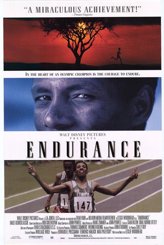 Endurance Movie Poster 27x40 (1999) Used Disney