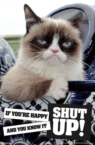 Grumpy Cat - Shut Up Wall Poster 23x34 RP14818 UPC882663048182