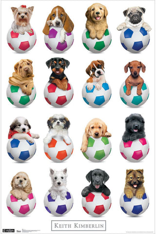 Puppy - Sports Poster 22x34 RP1208 Keith Kimberlin UPC017681012086