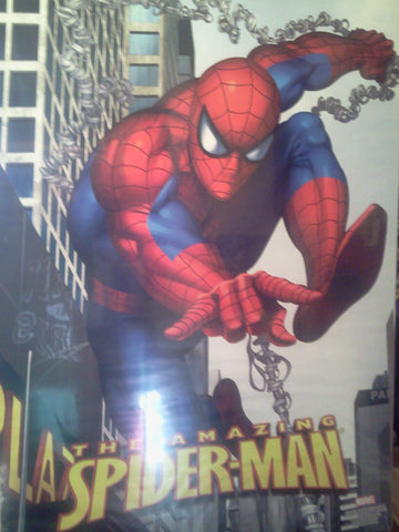 The Amazing Spider-man #2 20x30 used Movie Poster