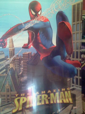 The Amazing Spider-man #3	20x30 used Movie Poster