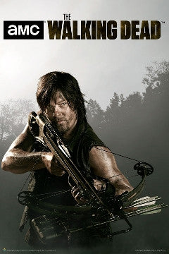 The Walking Dead Daryl TV Show Poster 22x34 #3175