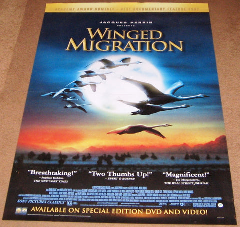 Winged Migration movie Poster 27x40 Used