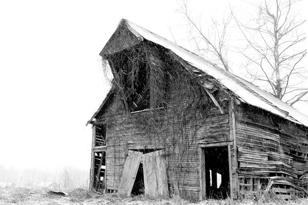 Old Abandoned Barn Black & White Art Photography On Canvas