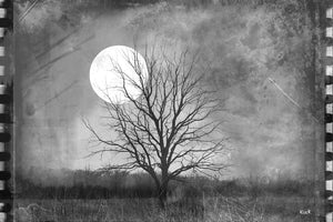 Load image into Gallery viewer, Vintage Film Lone Tree in Open Field Moonlight Photograph On Paper