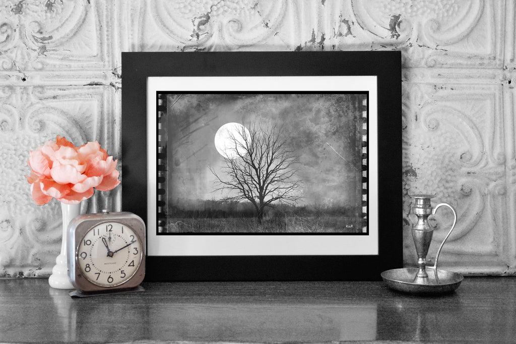 Vintage Film Lone Tree in Open Field Moonlight Photograph On Paper