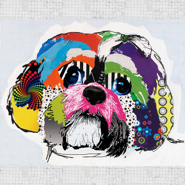 Shih Tzu Dog Art Prints by Michel Keck