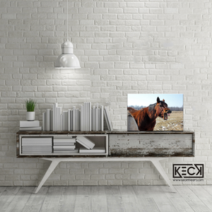 Load image into Gallery viewer, Horse Art Gallery