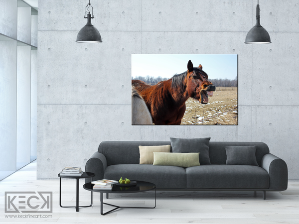 Big Mouth Horse Art Print. Canvas Art Print of Laughing Horse.  Horse Art Print for Farm house interior. Horse Art Print