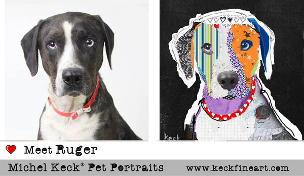 PET PORTRAITS:  Colorful Custom Pet Portraits by Michel Keck