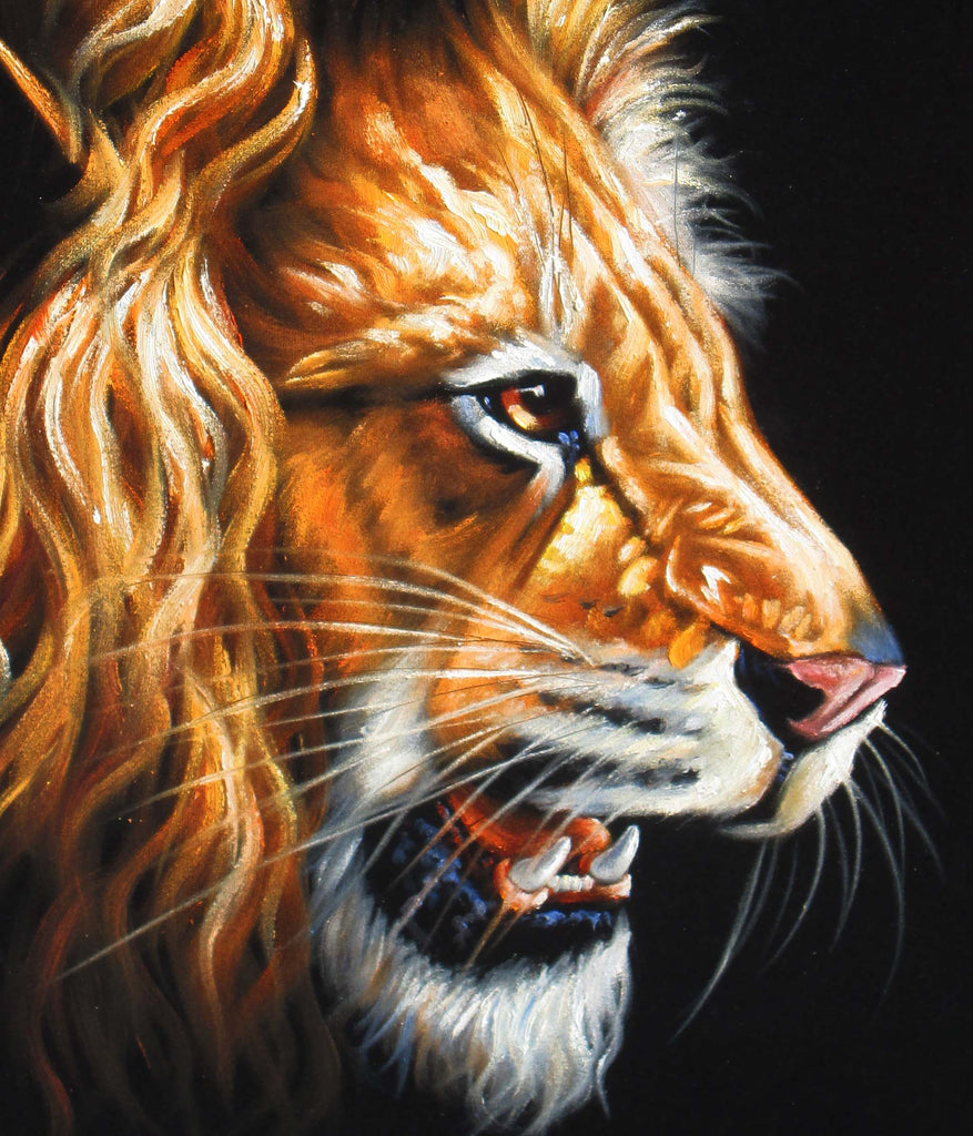 "Lion African ; Wild Cat; Original Oil Painting on Black Velvet ;   by Jorge Terrones -(size 18""x24"")-px J122"