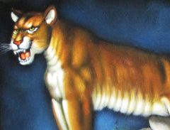 "Mountain Lion, cougar, puma, panther, Original Oil Painting on Black Velvet by Alfredo Rodriguez ""ARGO""  - #A110"