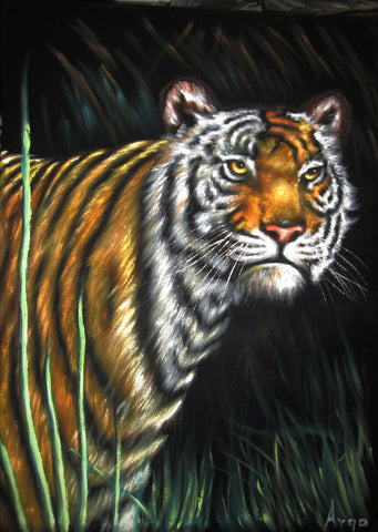 "Bengal Tiger,  Original Oil Painting on Black Velvet by Alfredo Rodriguez ""ARGO""  - #A116"