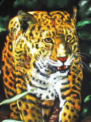 "Leopard, Panther, cougar, puma,  Original Oil Painting on Black Velvet by Alfredo Rodriguez ""ARGO""  - #A41"