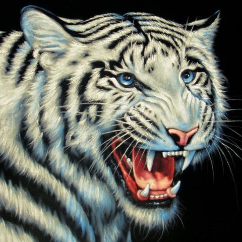 "White Tiger head ; Original Oil Painting on Black Velvet ;  by Jorge Terrones -(size 18""x24"")-p2 J158"