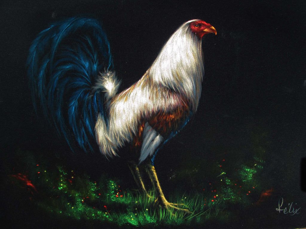 "Rooster, White and Blue Mexican Cock,  Original Oil Painting on Black Velvet by Enrique Felix , ""Felix"" - #F158"