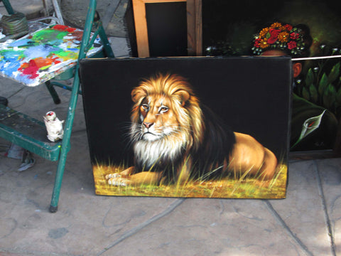 "African Lion sitting in grass; Original Oil Painting on Black Velvet ;  by Jorge Terrones -(size 18""x24"")-px J121"