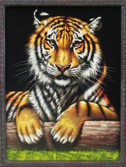 "Bengal tiger sitting in grass; Original Oil Painting on Black Velvet ;  by Jorge Terrones -(size 18""x24"")-px J172"