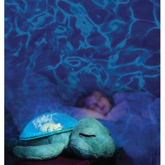 Cloud B Tranquil Turtle  - Belly Laughs - A Children's & Maternity Boutique - Canada - 2