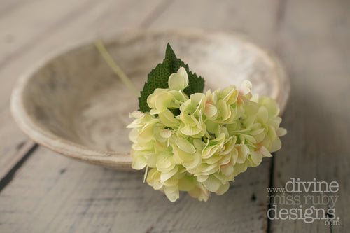 Green Hydrangea SINGLE STEM
