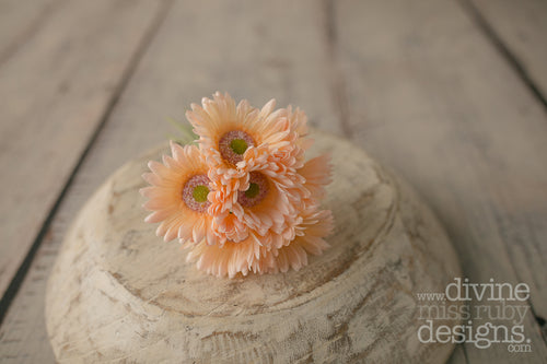 Peach Gerbera 7 Head Posy