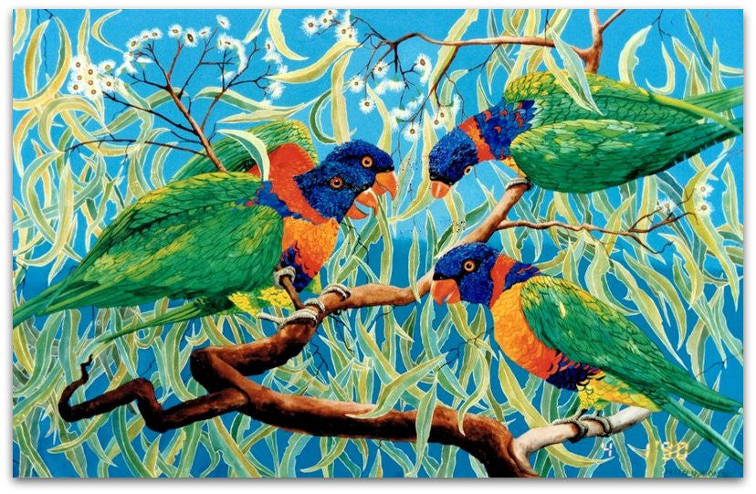 Lorikeets on Bloodwood
