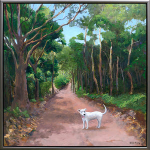 White Dog on Forest Track