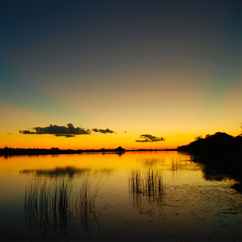 Botswana Discovery Safari - 15 Days