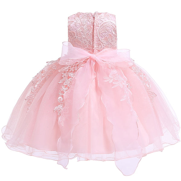 Baby Girls Newborn Dress for 1 Year Birthday Party Dress Embroidered Tutu Infant Toddler Flower Dresses 0-2 Years Clothing