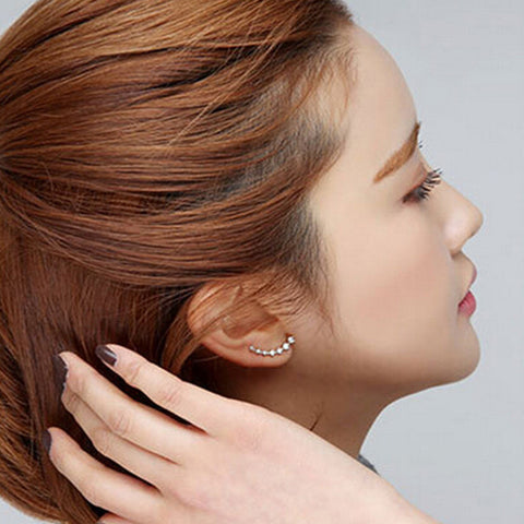 Women Fashion Rhinestone Gold Silver Crystal Earrings Ear Hook Stud