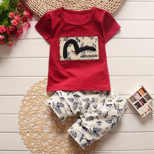 c3cdc641 JOHNKART.COM. $17.94 USD. Bibicola baby boy summer clothing sets ...