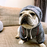 New Design Dog Hoodies in 2 Colors, French Bulldog Clothes