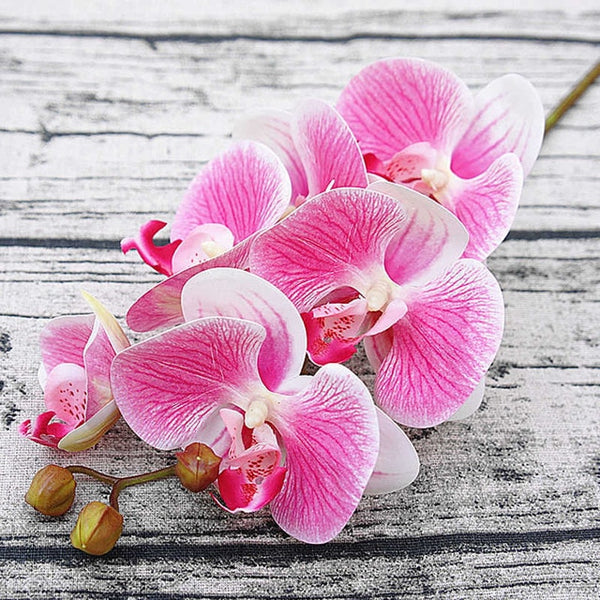 3D Artificial Butterfly Orchid Flowers Fake Moth flor Orchid Flower for Home Wedding DIY Decoration Real Touch Home Decor Flore