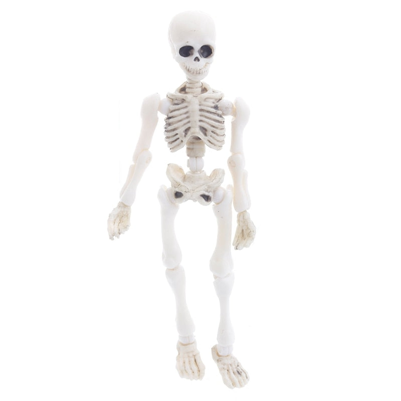 Movable Mr. Bones Skeleton Human Model Skull Full Body Mini Figure Toy Halloween