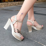 Women Sandals Sexy High Heels Casual Shoes Woman Gold Silver Summer Sandals Female Bling Buckle Strap Ladies Shoes BeautyFeet