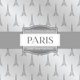 Silver Paris Prints Digital Paper DP887 - Digital Paper Shop - 2