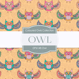 Owl Digital Paper DP6148B