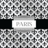 Silver Paris Prints Digital Paper DP887 - Digital Paper Shop - 3